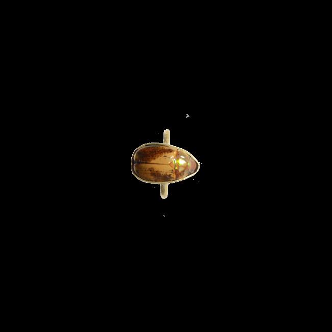 Scarabée bague marron packshot